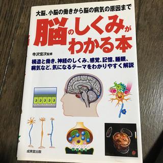 脳のしくみがわかる本 寺沢宏次監修 成美出版(健康/医学)