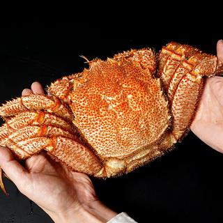 オホーツク産超特大流氷毛ガニ1キロサイズ(魚介)