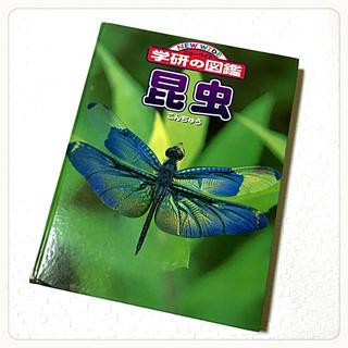 ガッケン(学研)の学研の図鑑 「昆虫」 ニューワイド(絵本/児童書)