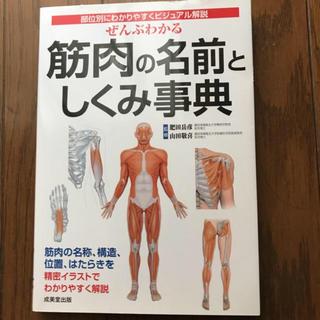筋肉の名前としくみ事典(健康/医学)