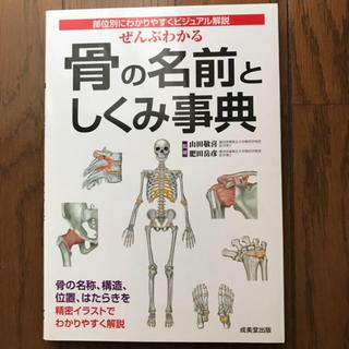 骨の名前としくみ事典(健康/医学)