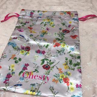 チェスティ(Chesty)のChesty 巾着(ノベルティグッズ)