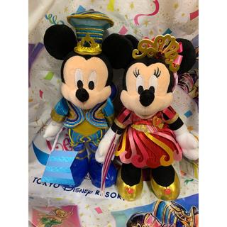 ディズニー(Disney)のディズニー 35周年 グランドフィナーレ ポージープラッシー ミッキー&ミニー(キャラクターグッズ)