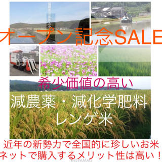 限定販売・希少価値の高い‼️減農薬・減化学肥料・レンゲ米・30年度・玄米10㎏(米/穀物)