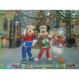 ディズニー(Disney)の2016 クリスマス スナップフォト 写真2枚 台紙 ディズニーランド TDL(キャラクターグッズ)