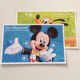 ディズニー(Disney)のディズニーシー チケット(遊園地/テーマパーク)