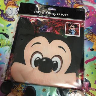ディズニー(Disney)の【新品】イマジニングザマジック ミッキー ウォッシュタオルディズニーリゾート(キャラクターグッズ)