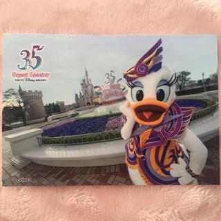 デイジー(Daisy)の35周年スペシャルフォト♡デイジー♡ディズニーランド(キャラクターグッズ)