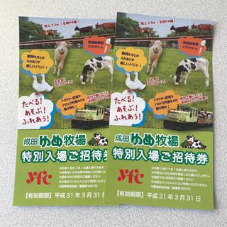 成田ゆめ牧場 特別入場ご優待券 2枚(動物園)