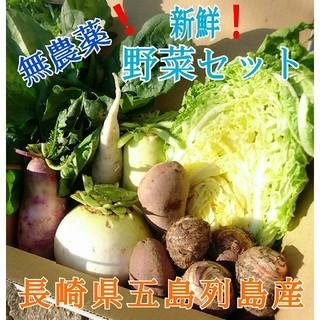 無農薬❗新鮮野菜セット(70サイズ) 長崎県五島列島よりお届け❗