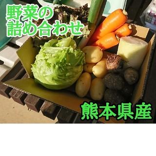 数量限定です。野菜の詰め合わせ7種(熊本県産)