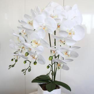 ザラホーム(ZARA HOME)の確認用 mimi様専用(花瓶)