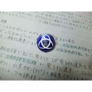日本橋女学館高校 校章バッジ(その他)