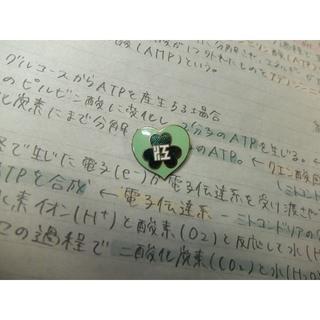 江戸川女子中学校・高校 校章バッジ(その他)