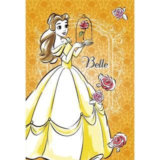 ディズニー(Disney)のH6 ベル☆美女と野獣☆アートパネル☆ディズニープリンセス(その他)
