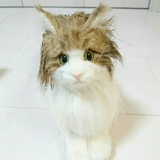 美人な猫さん(ぬいぐるみ)