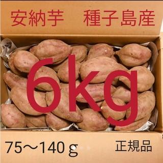 安納芋 6キロ 送料無料 種子島産 完熟 さつまいも