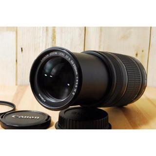 Canon - ★イベントに最適★Canon EF-S 55-250㎜ Ⅱ☆手振れ補正付き超望遠