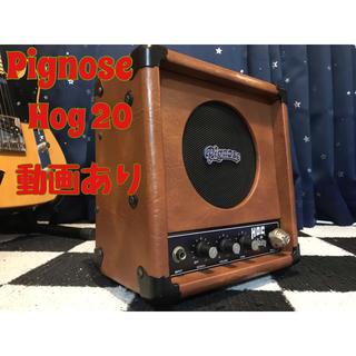 ギターアンプ Pignose Hog 20(ギターアンプ)