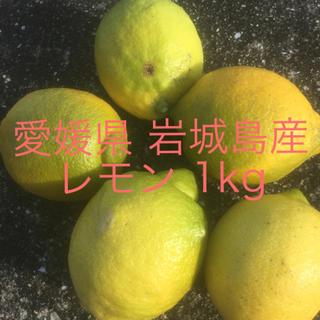 愛媛県 岩城島産レモン 1kg(フルーツ)