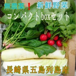 無農薬❗新鮮野菜セット(コンパクトbox) 長崎県五島列島よりお届け❗