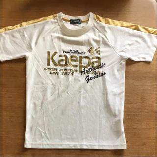 ケイパ(Kaepa)の【160】Kaepa Tシャツ(Tシャツ/カットソー)