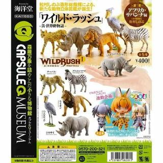 カイヨウドウ(海洋堂)のWILD RUSH 真・世界動物誌Ⅰ~アフリカサバンナ編~全5種セット(その他)