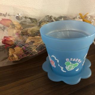 ディズニー(Disney)のレア ディズニーランド お土産 植木鉢 ミッキー 小物入れ(小物入れ)