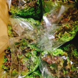 《S様専用》野菜set(野菜)