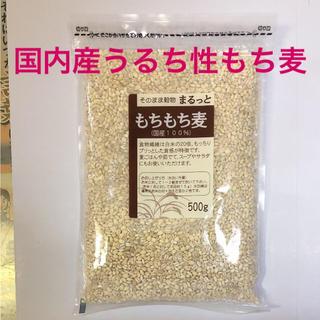 もちもち麦❣️500g袋☆#国内産もち麦国産もち麦