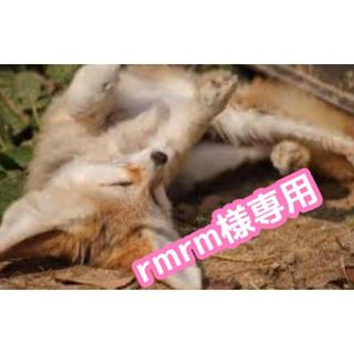 【rmrm様専用】コピックチャオ10本+バリオスインク(カラーペン/コピック)
