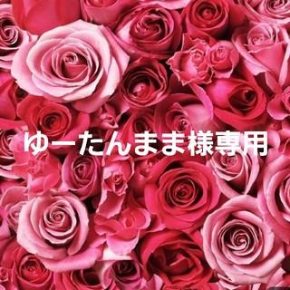 ゆーたんまま様専用(マタニティ)