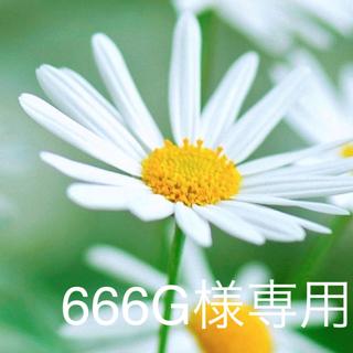 スターフラワー200本 選択自由~送料無料~(プリザーブドフラワー)