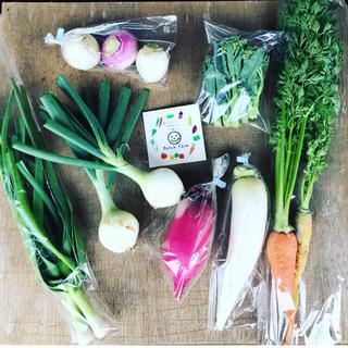 【組み合わせ自由!選べる野菜セット】渥美半島から直送!旬彩野菜バスケット