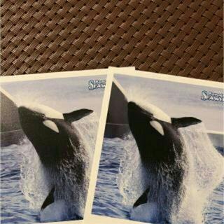 鴨川シーワールド無料入園券2枚+割引券(水族館)