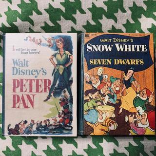 ディズニー(Disney)のピーターパン 白雪姫 ブックボックス(小物入れ)