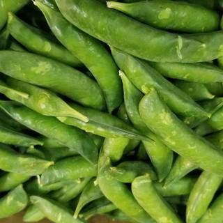 鹿児島県のグリーンピース 2kg(野菜)