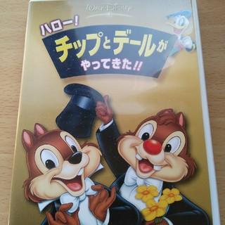 Disney - 正規品 チップとデール DVD