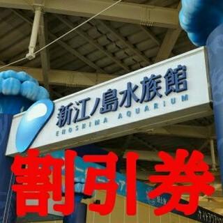 新江ノ島水族館 割引券(水族館)