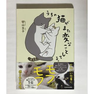 カドカワショテン(角川書店)のうちの猫がまた変なことしてる。 1巻(4コマ漫画)
