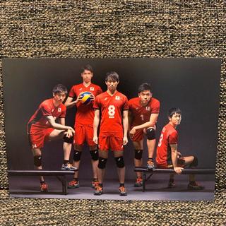 全日本男子バレー5選手ポストカード(バレーボール)