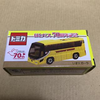 タカラトミー(Takara Tomy)のトミカ はとバス 70周年記念 いすゞ ガーラ(ミニカー)