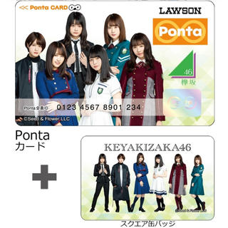 ケヤキザカフォーティーシックス(欅坂46(けやき坂46))の欅坂46 Pontaカード+スクエア缶バッジ type B(アイドルグッズ)