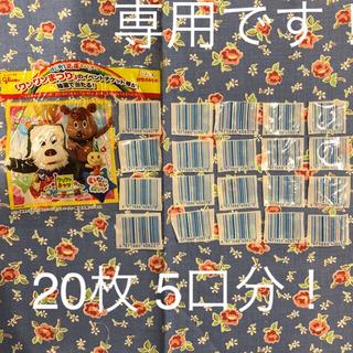 グリコ ×ワンワンまつり イベント懸賞 5口分!(キッズ/ファミリー)