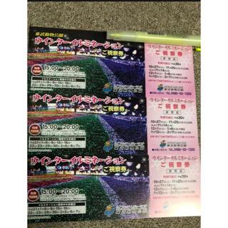 東武動物公園イルミネーションチケット 2枚(動物園)