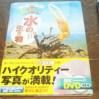 ガッケン(学研)の学研の図鑑LIVE (ライブ) 水の生き物(絵本/児童書)