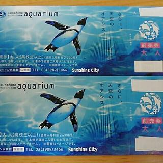 サンシャイン水族館 チケット(水族館)