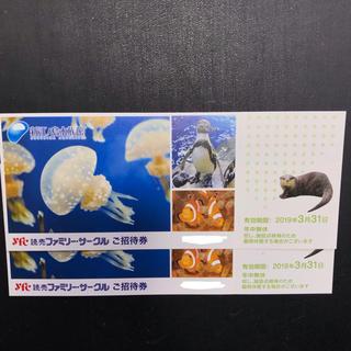 新江ノ島水族館入園招待券 2枚2名様(水族館)