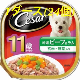 シーザー(CASAR)のシーザー 11歳からの 厳選ビーフ 野菜 玄米入り 24コ(ペットフード)