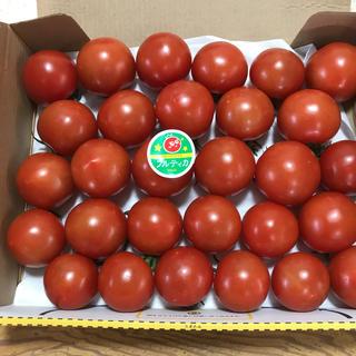 フルティカ   中玉トマト   約1キロ  沖縄県産